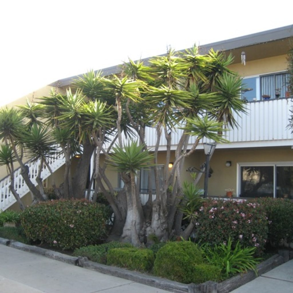 4321-cass-street-1024x1024 Commercial Property Management San Diego